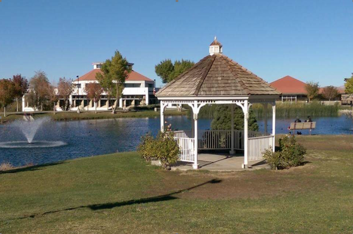 Picture of Campus Lake with Gazebo and Library in the background